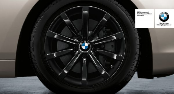 BMW Star Spoke 365
