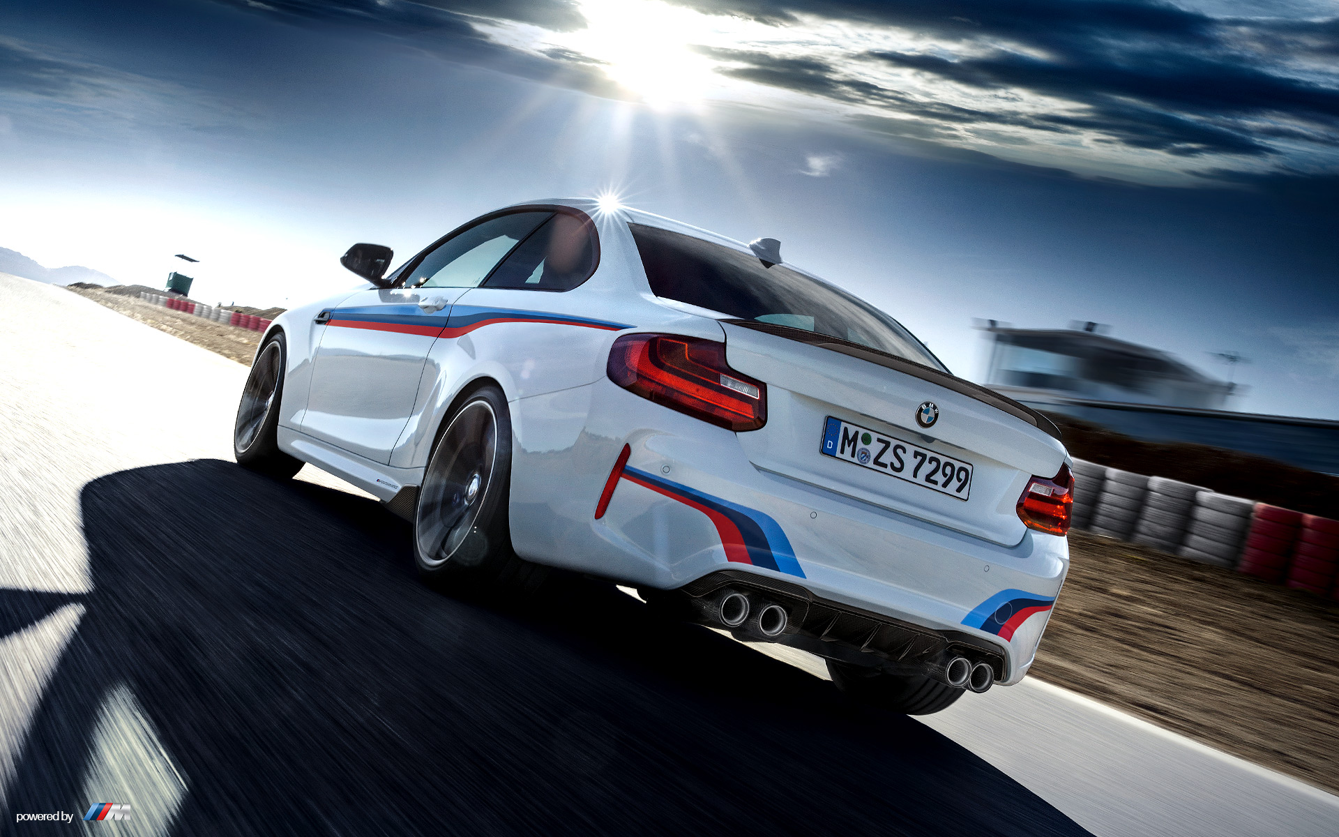 fight the forces. - pfaff bmw