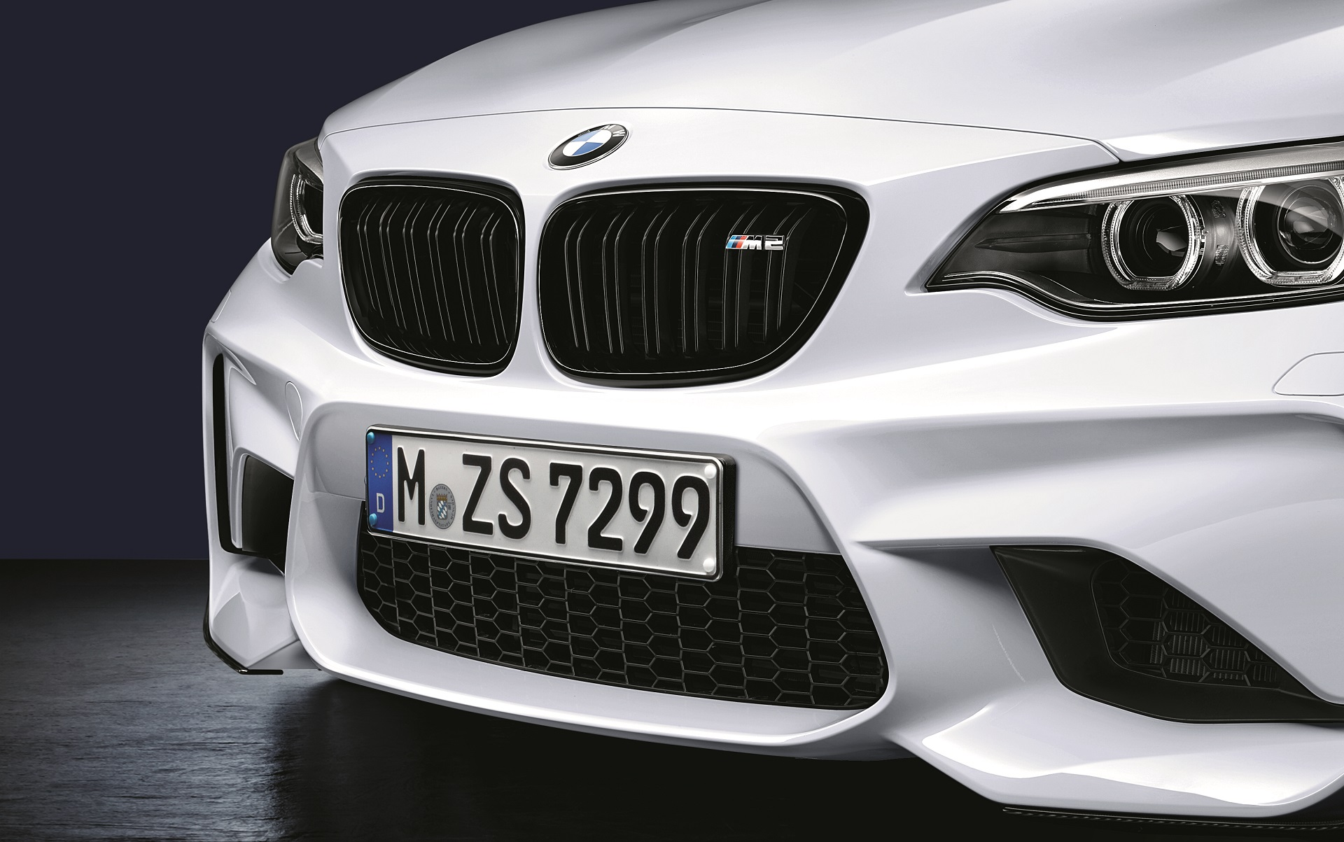 M Performance Kidney Grilles